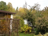 Jesien05