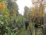 Jesien06