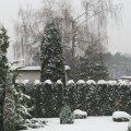 zima_09